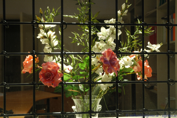 Flowers in Jail