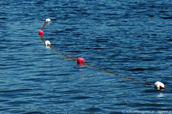 Buoys on a string