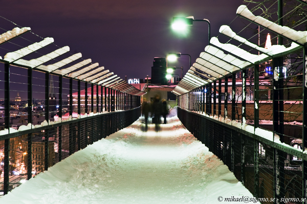 Bridge in wintermode